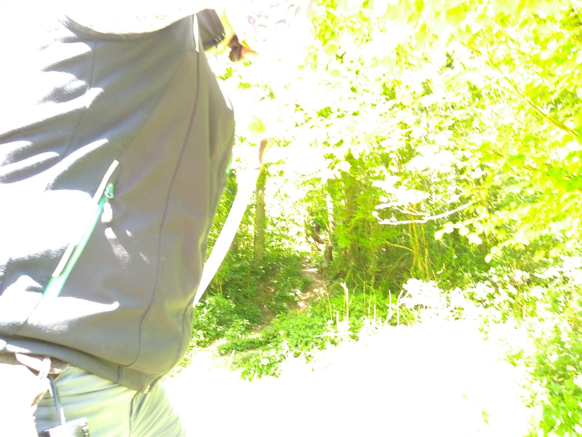Bogenschütze im Wald bei starkem Sonnenschein durch die Bäume