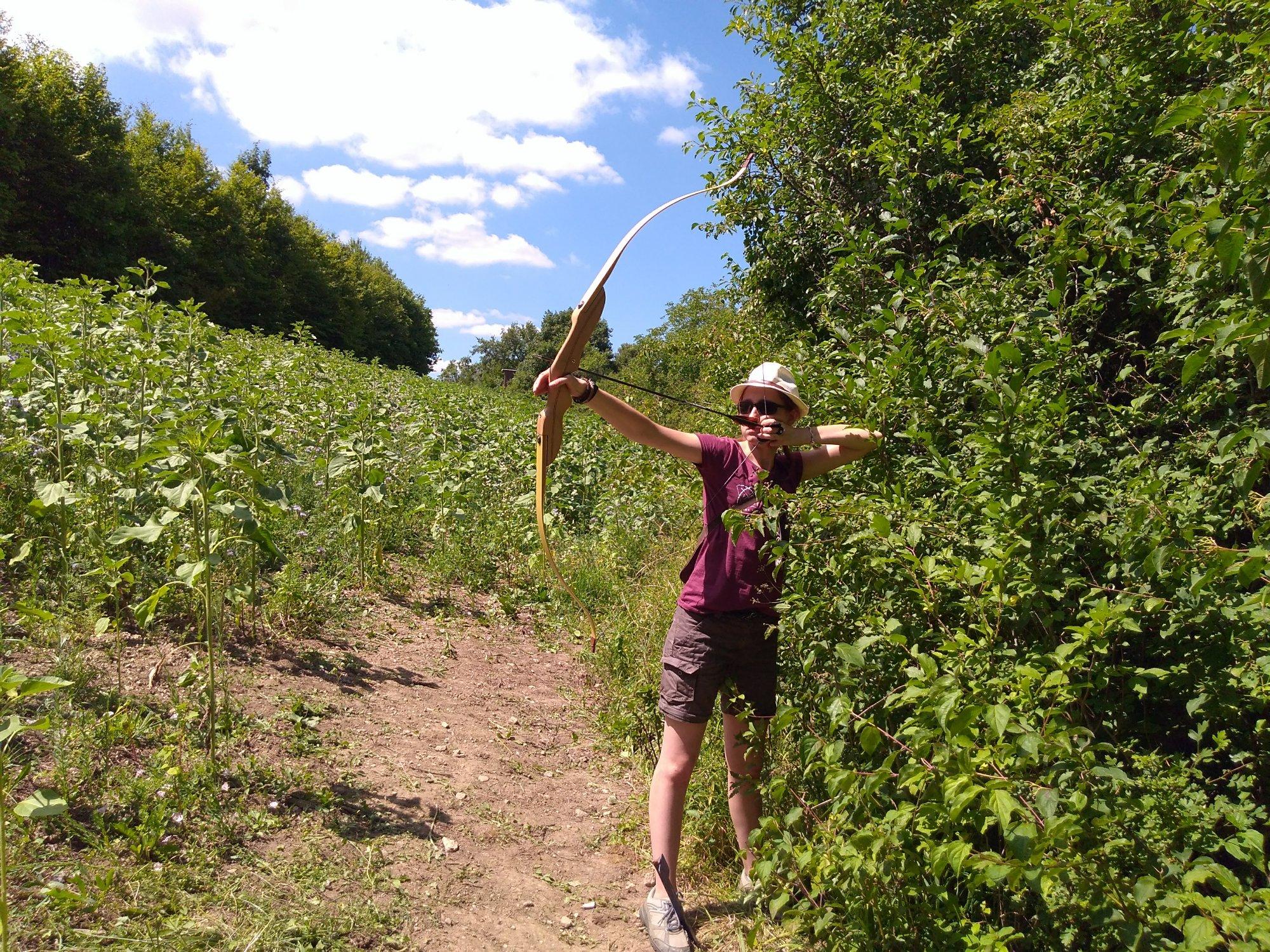 Bogenschützin an Sonnenblumenfeld
