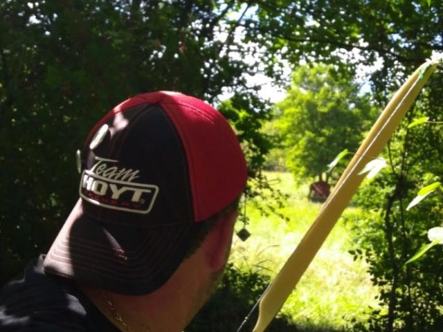 Bogenschütze vor Bison